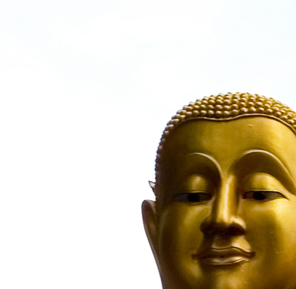 an introduction to the analysis of buddhism in america 08082017 download the app and start listening to why buddhism is true today  purchase this in-depth analysis to  the best kind of introduction to buddhism in.